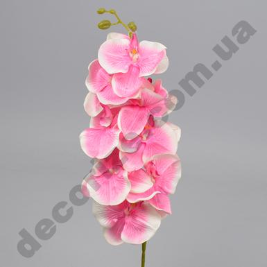 """Орхидея """"сантьяго"""" большая розовая"""