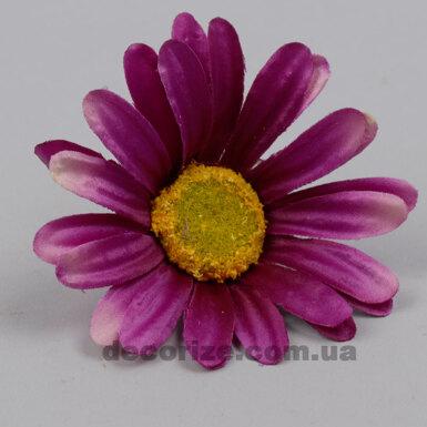 головка ромашки фиолетовая