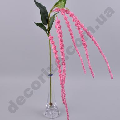 амарант розовый