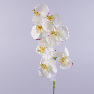 Орхидея фаленопсис 90см с зеленцой