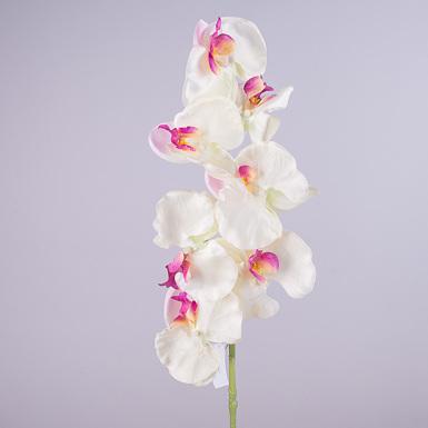 Орхидея фаленопсис 90см с розовинкой