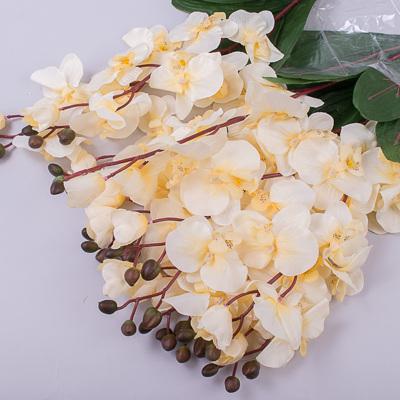 Орхидея декоративная кремовая