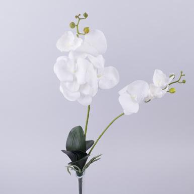 орхидея двойная латексная белая с листочками