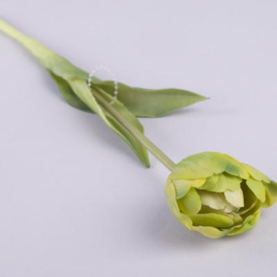 """Тюльпан одинарный латексный """"махровый"""" зеленый"""