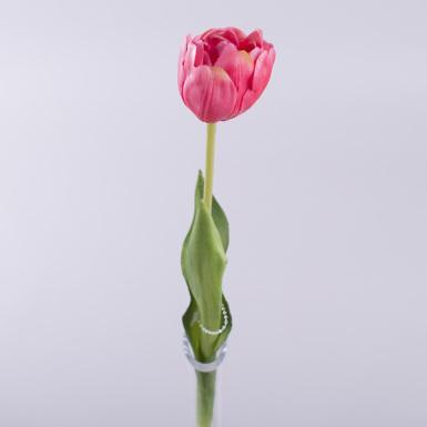 """Тюльпан одинарный латексный """"махровый"""" розово-сливовый"""