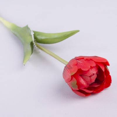 """Тюльпан одинарный латексный """"махровый"""" красный"""