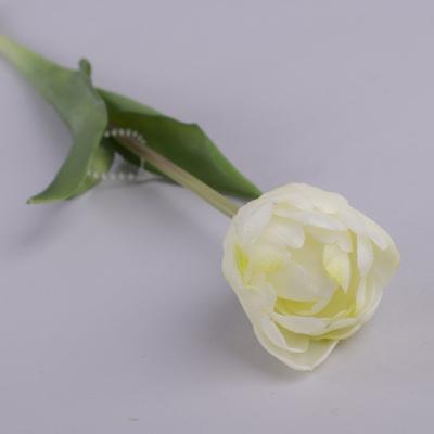 """Тюльпан одинарный латексный """"махровый"""" белый"""