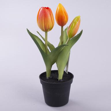 тюльпан латексный в горшке желто-оранжевый