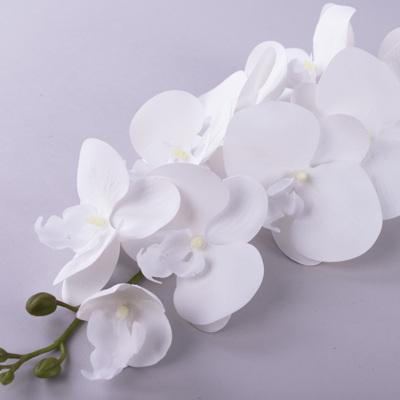 """Орхидея """"белоснежка"""" 98см"""