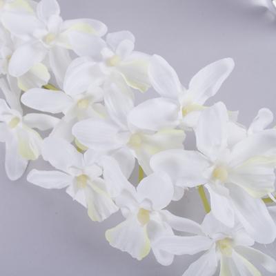 Орхидея - георгина