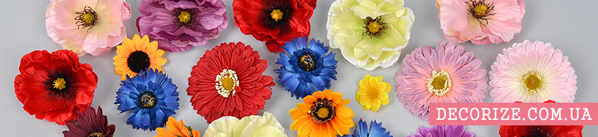 - головки полевых цветов