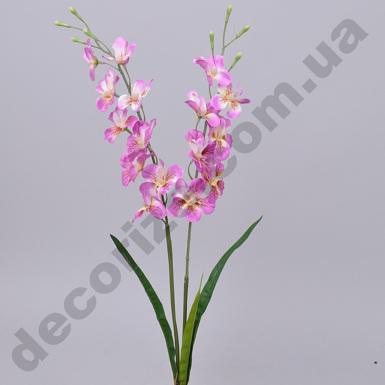 Орхидея розово-сиреневая