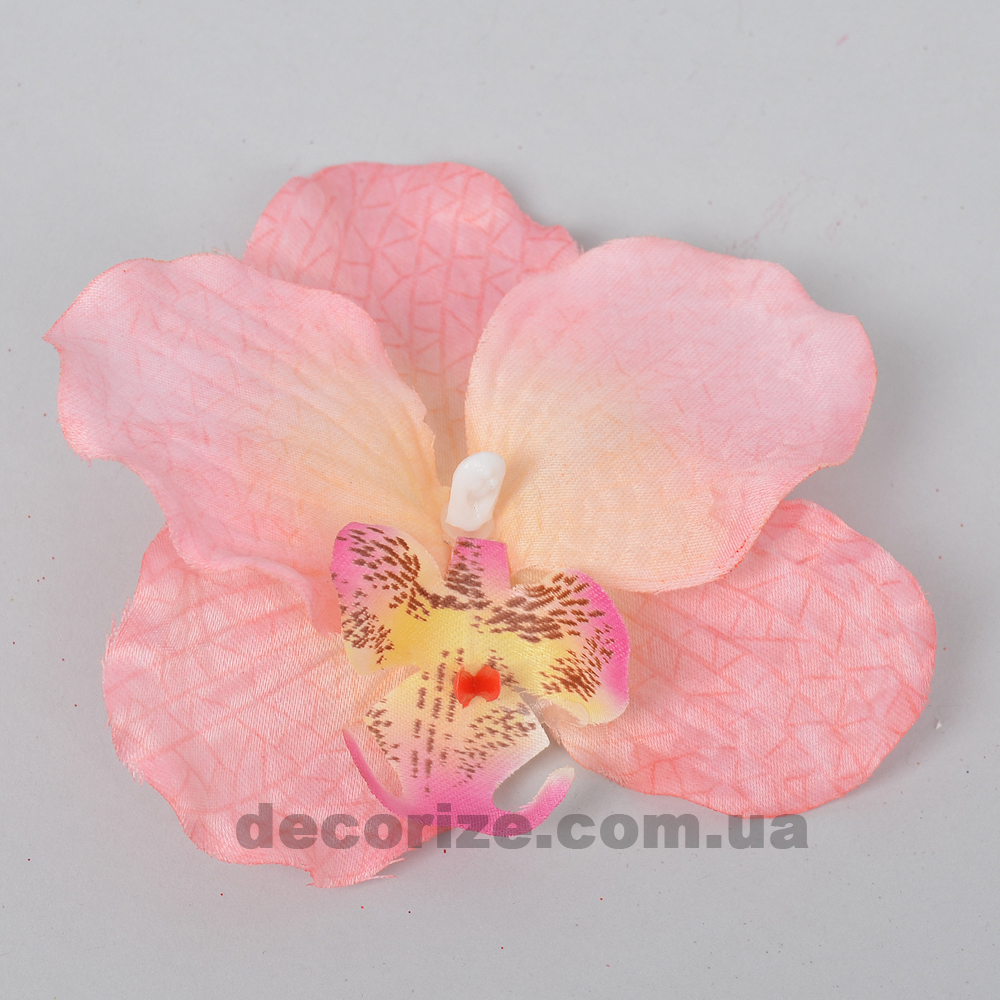 головка орхідеї ніжно рожева