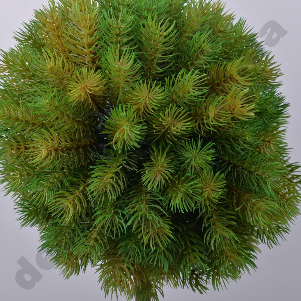 дерево штамбовая сосна больш. 63см