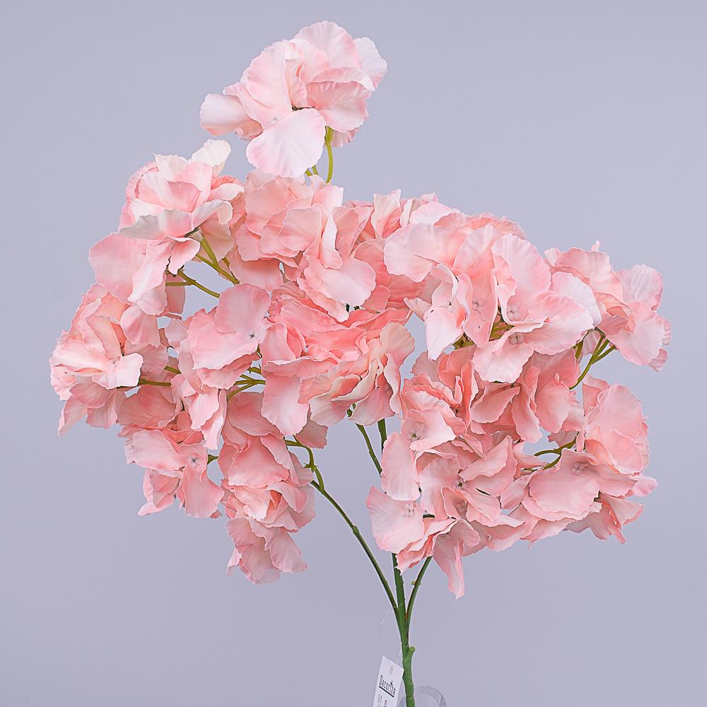 Кущова гортензія (rose quartz)