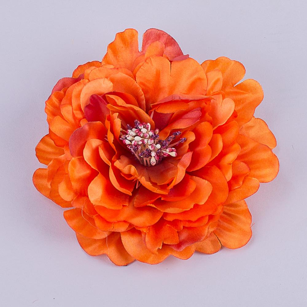 головка пион оранж
