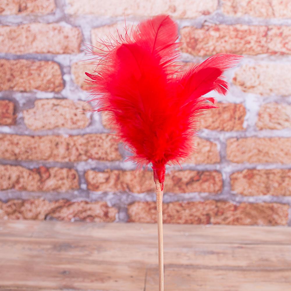 перья на палке красные
