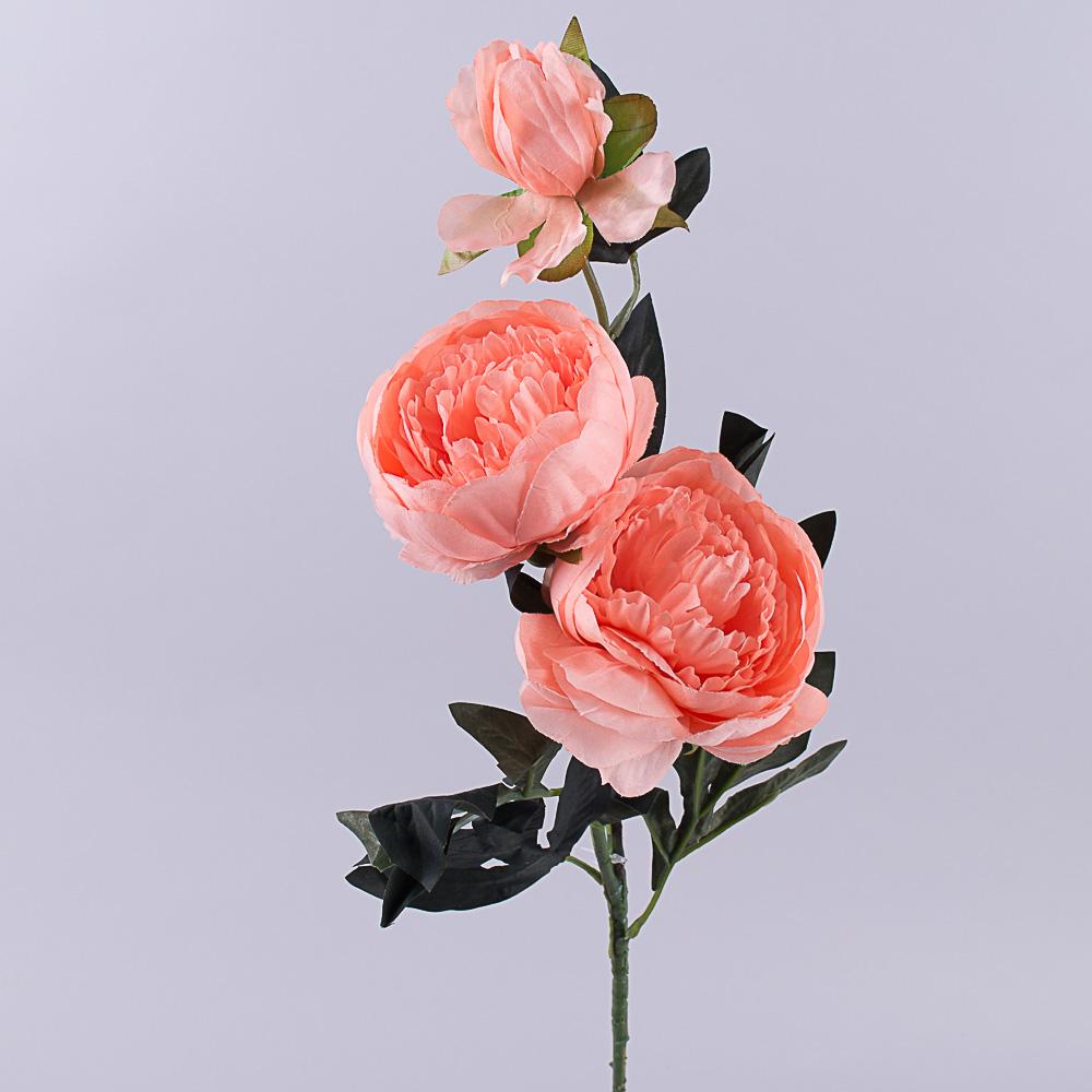 Пион 2 цветка и бутон коралловый