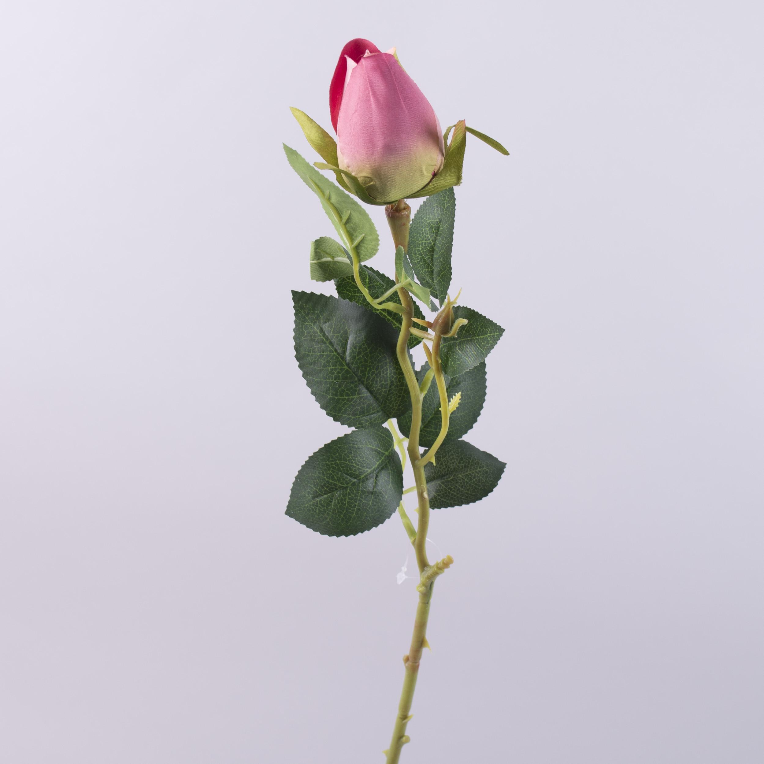 роза с закрытым бутоном сливовая