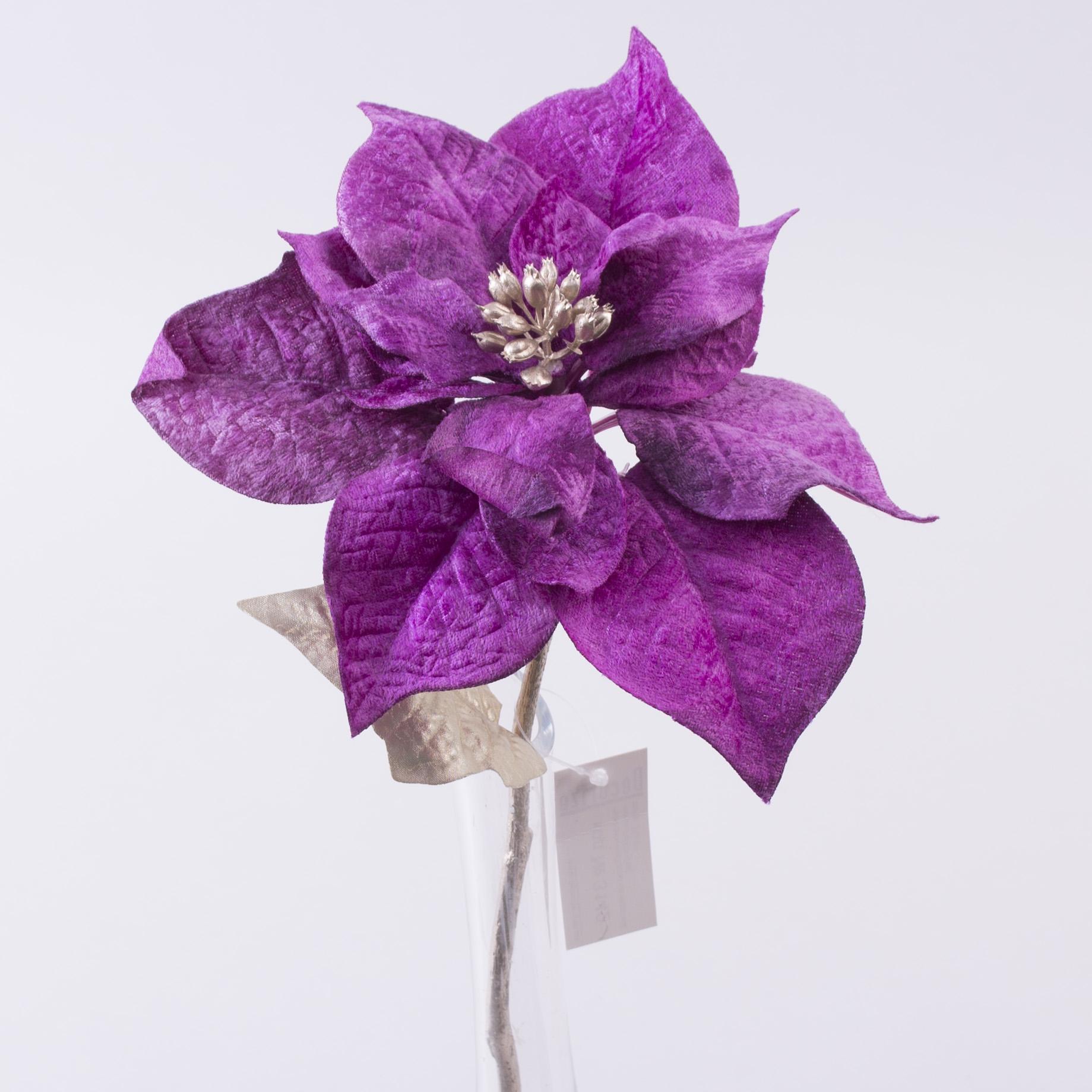 пуансетия бархатная короткая (фиолетовая- PU-01)