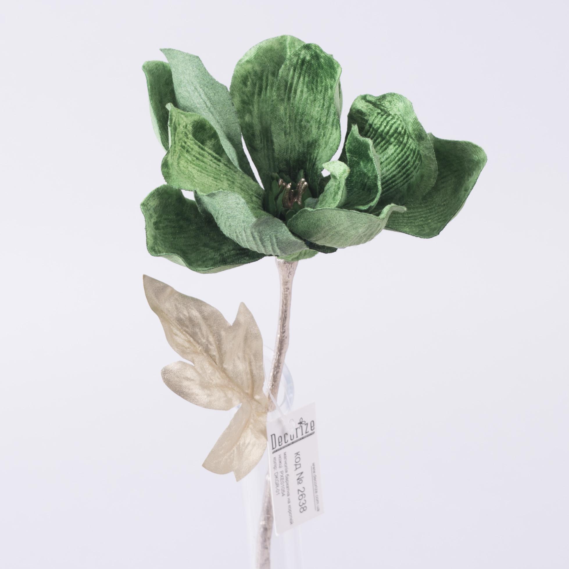 магнолия бархатная (зеленая  DKGR-01)