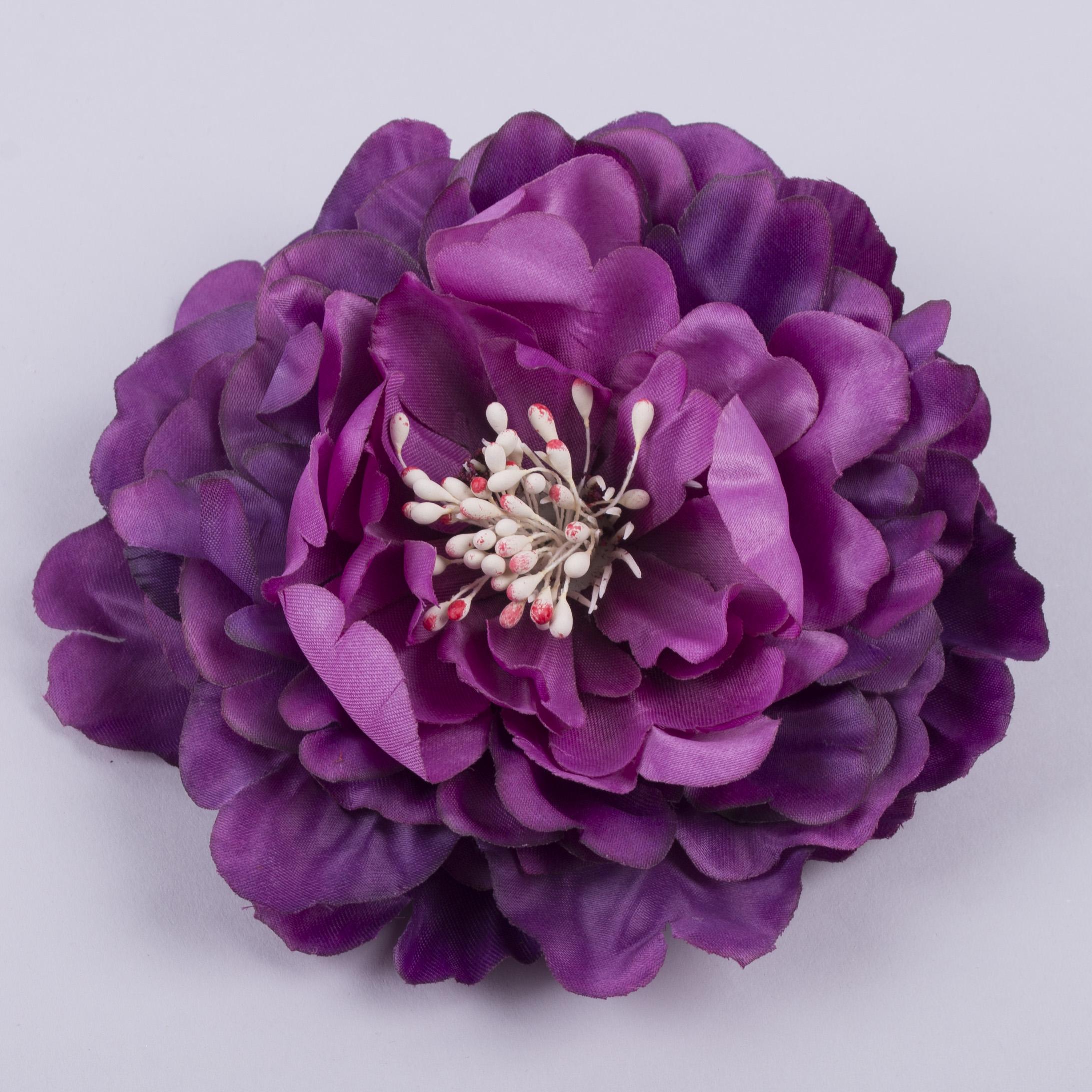 головка пиона фиолетовая
