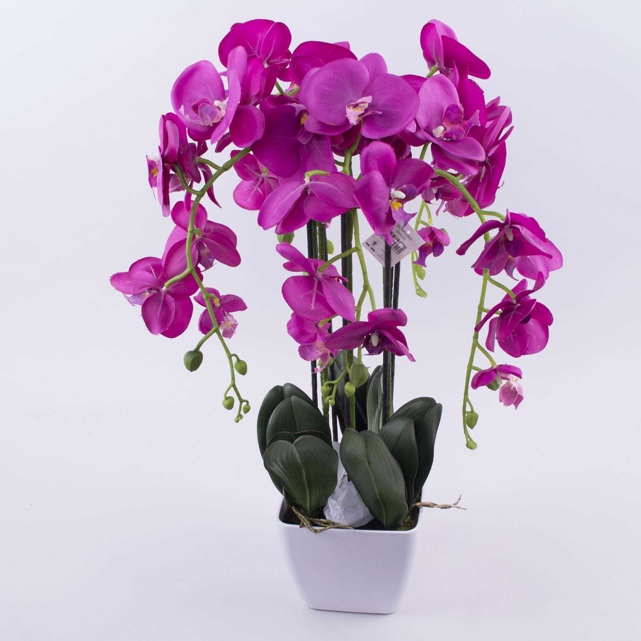 квіти орхідея на 5 гілок латексна в кашпо (фіолет)