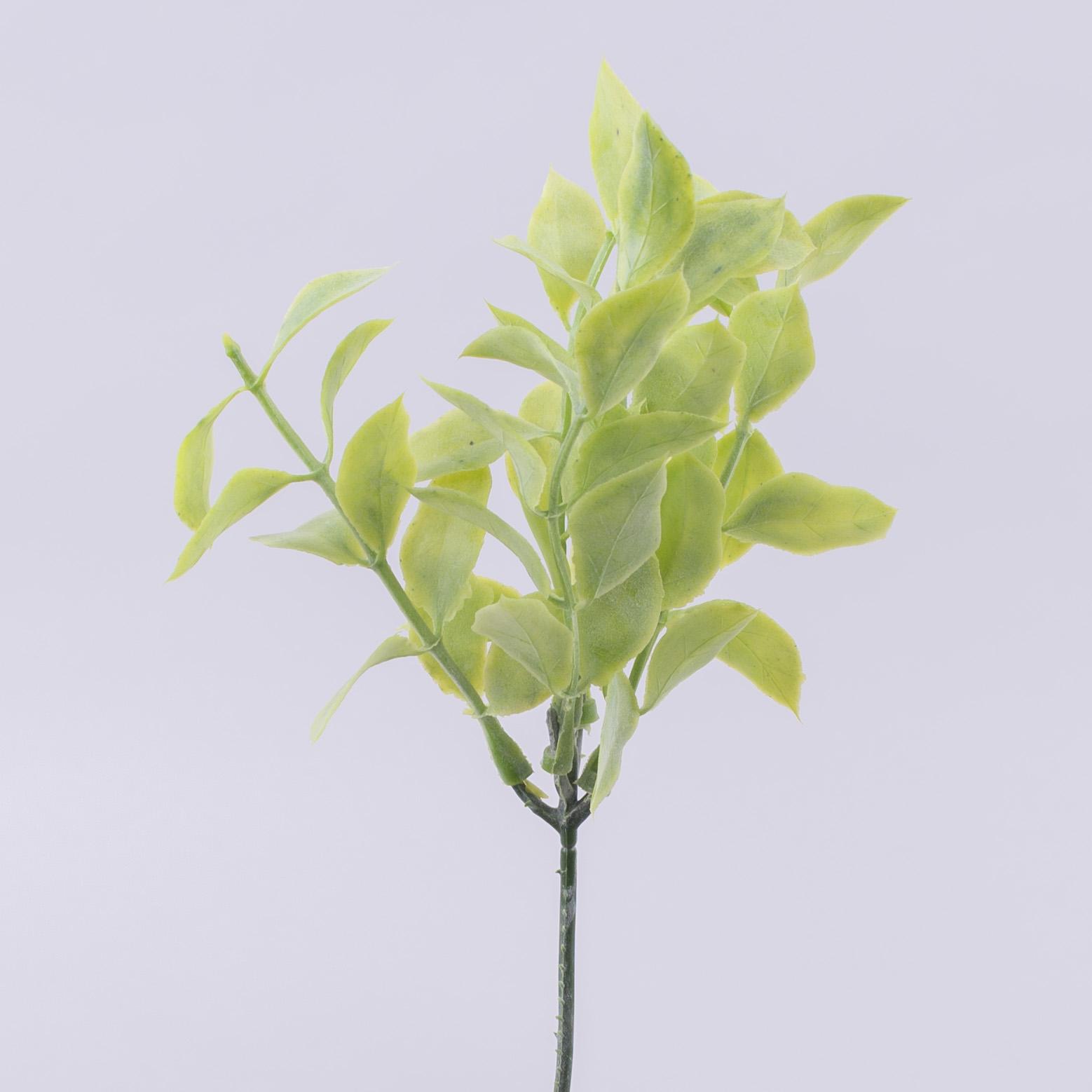 Травка дополнитель оливы (салатовая)