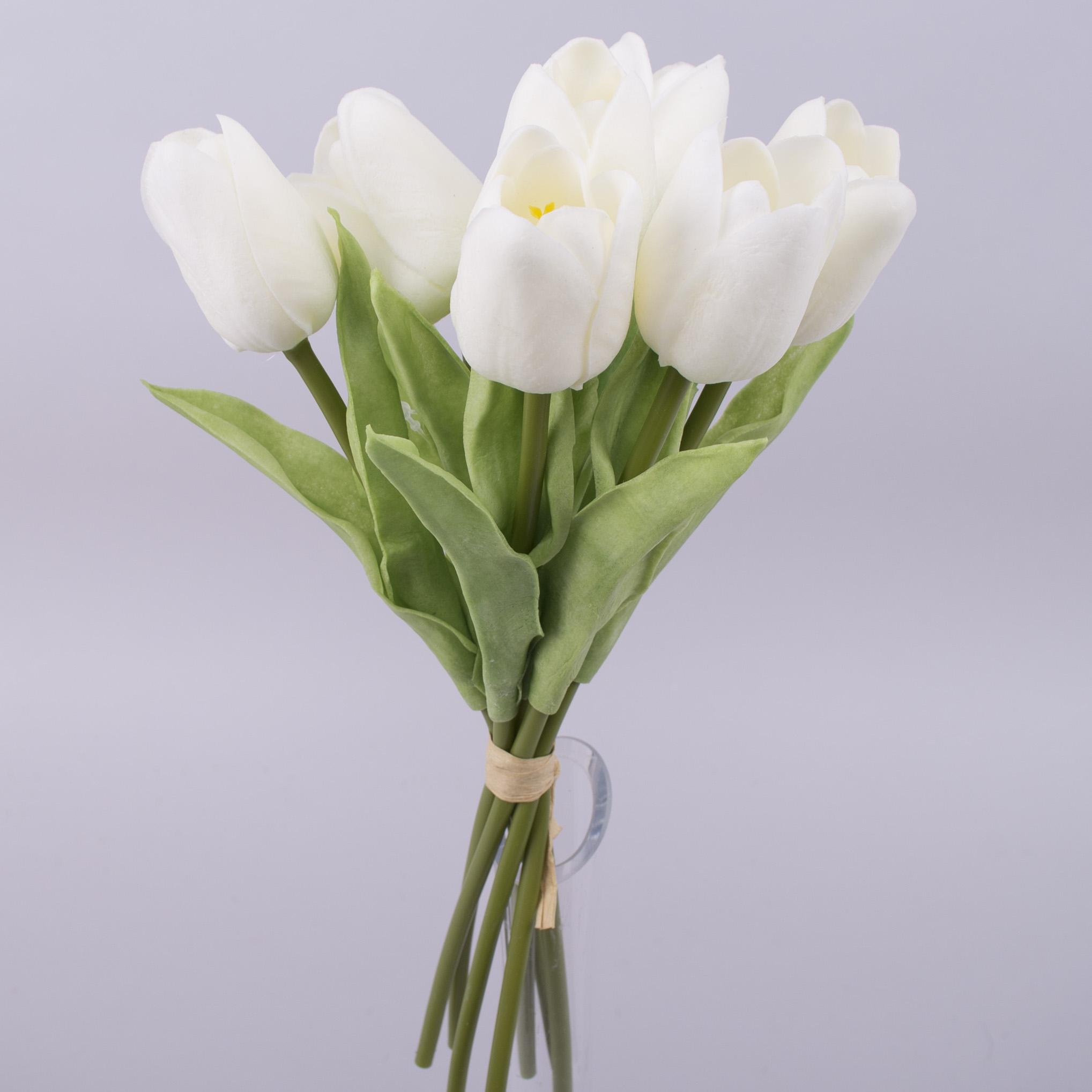 Тюльпан бутоном латексный молочный (7шт)