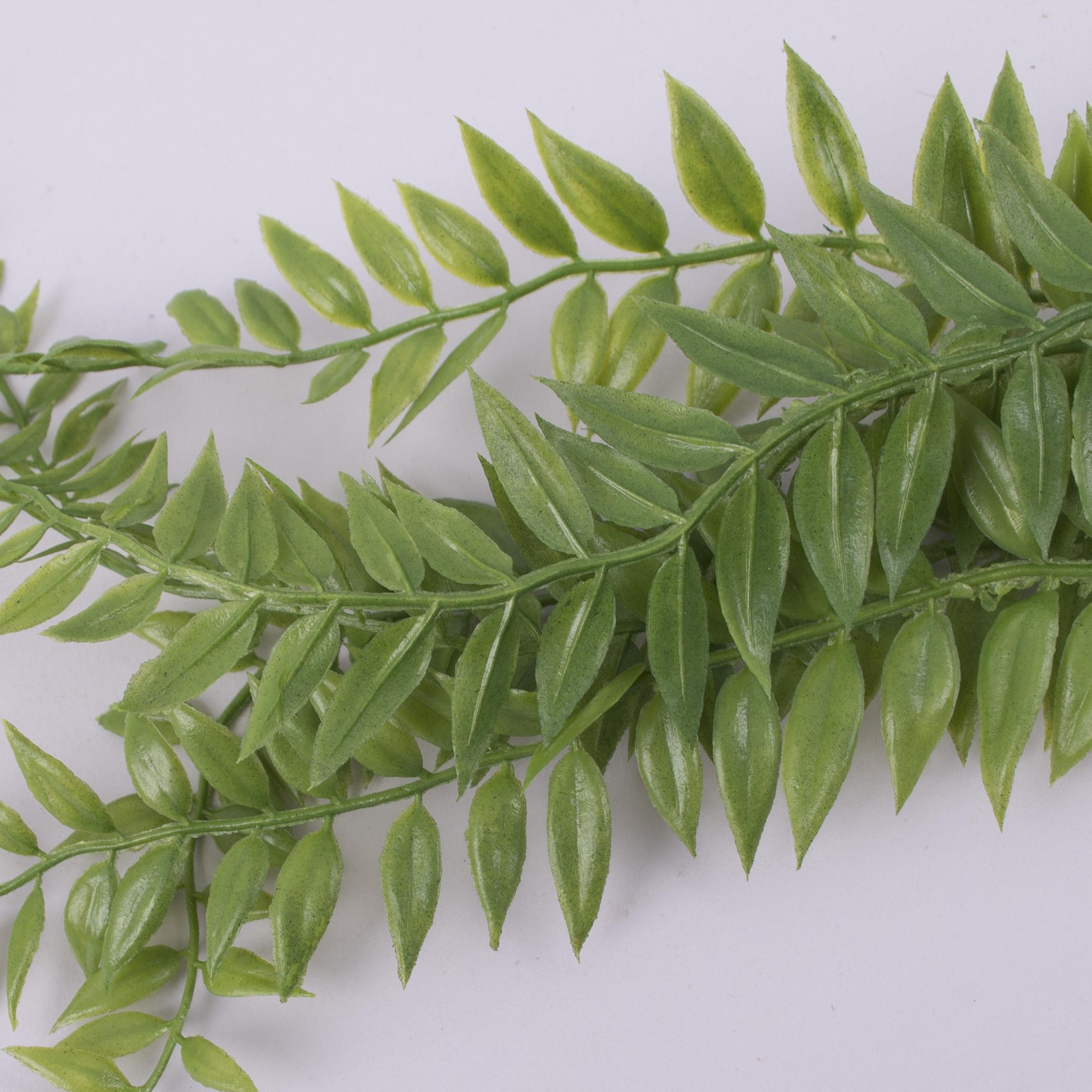 добавка - папороть свисающая (зеленая)