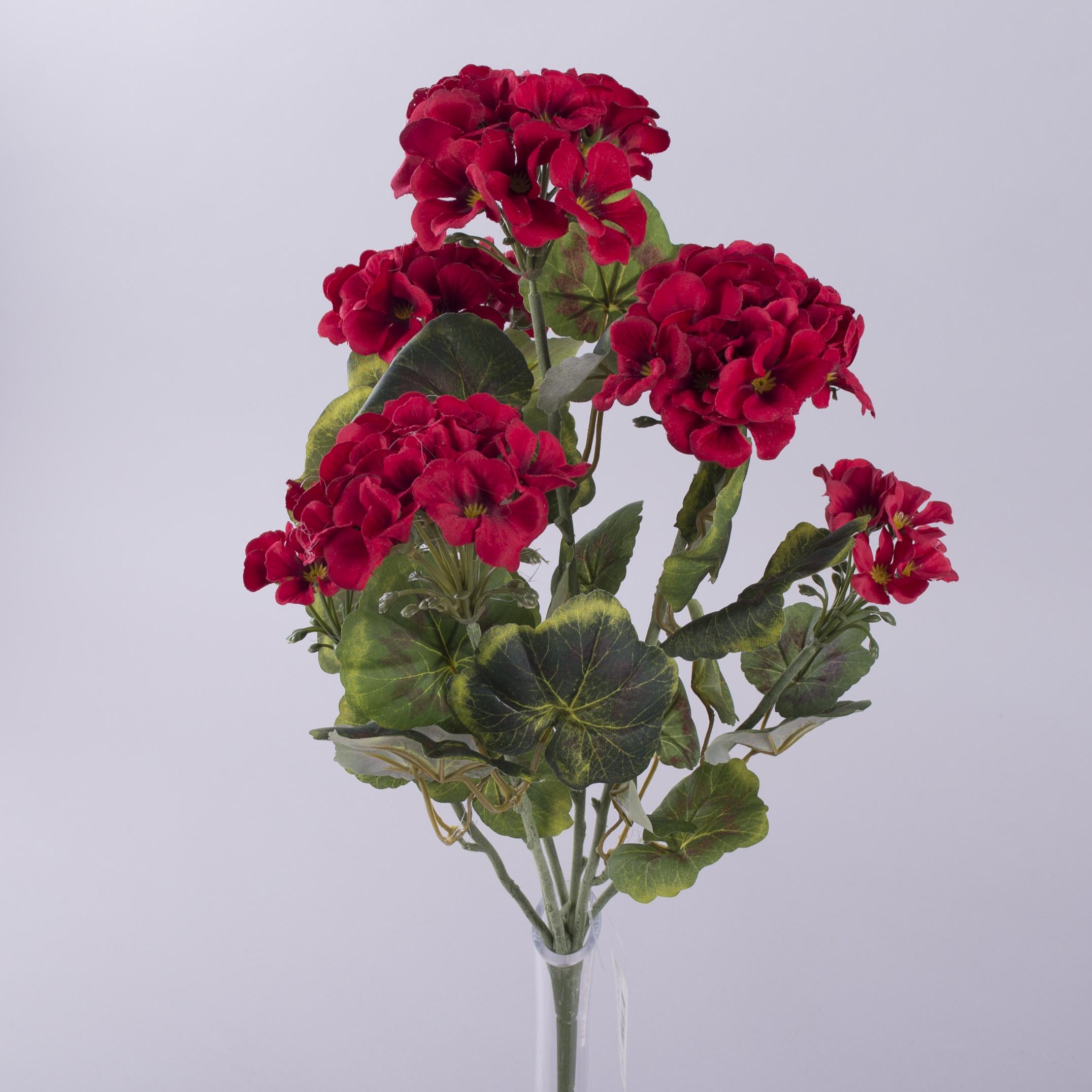 букет пеларгония большая красная