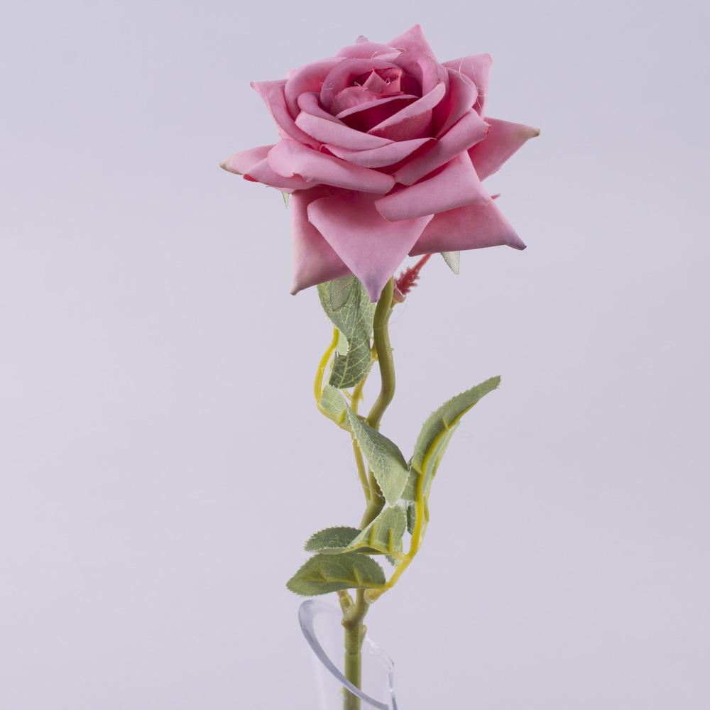 роза одинарная с острыми лепестками (сливовая)
