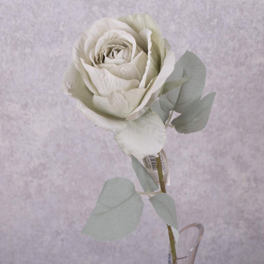 роза с голубым листиком (мятная)