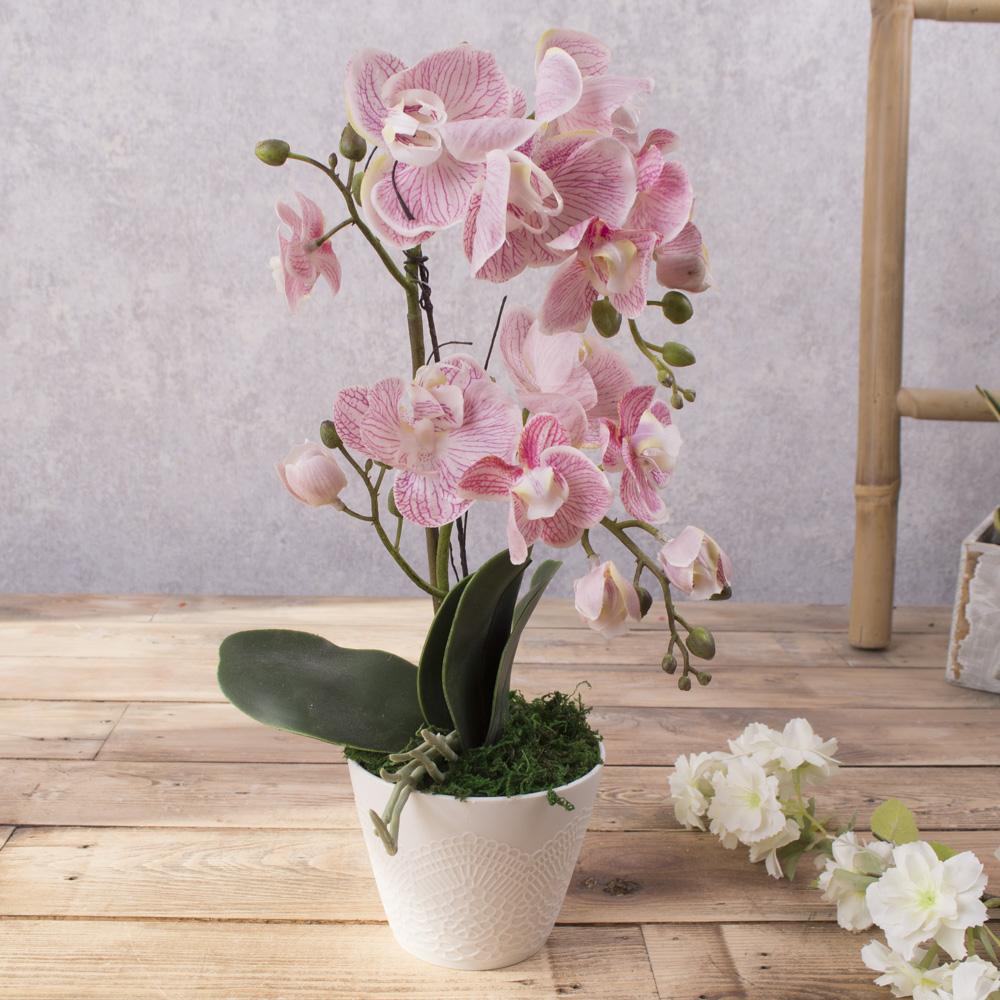 орхідея латексна в кашпо подвійна (рожева)