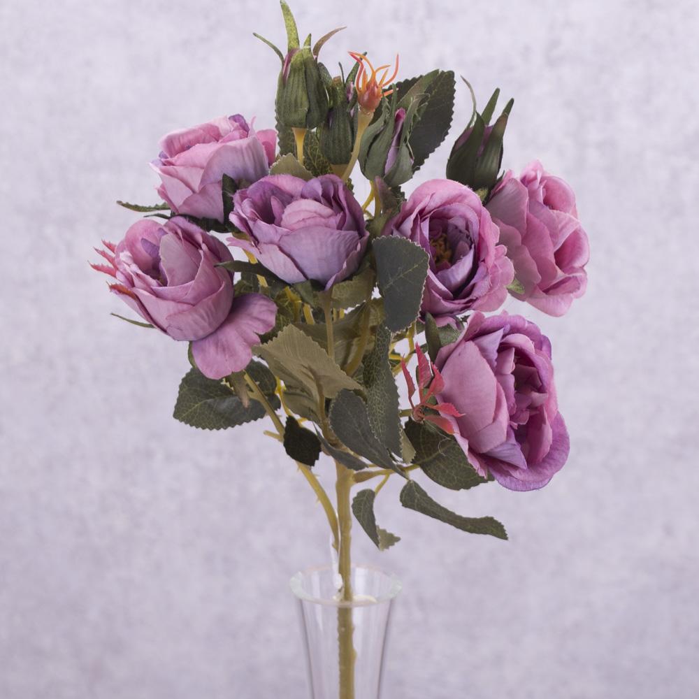 """роза кущевая """"зонтик"""" фиолетовая"""