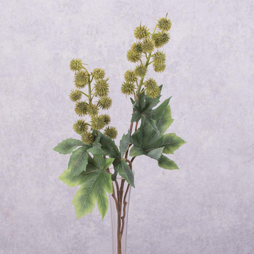 цвет каштана латексный зеленый