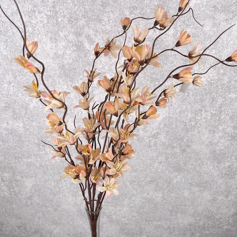 Букет форзиция персиковая
