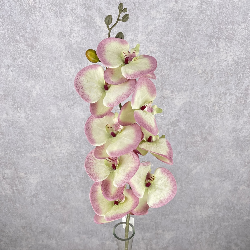 "орхидея ""мраморная"" розово-персиковая"