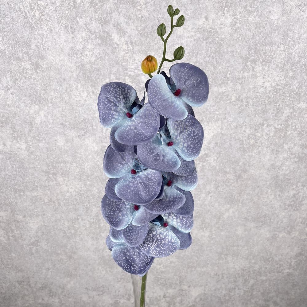 """орхидея """"мраморная"""" сине-голубая"""