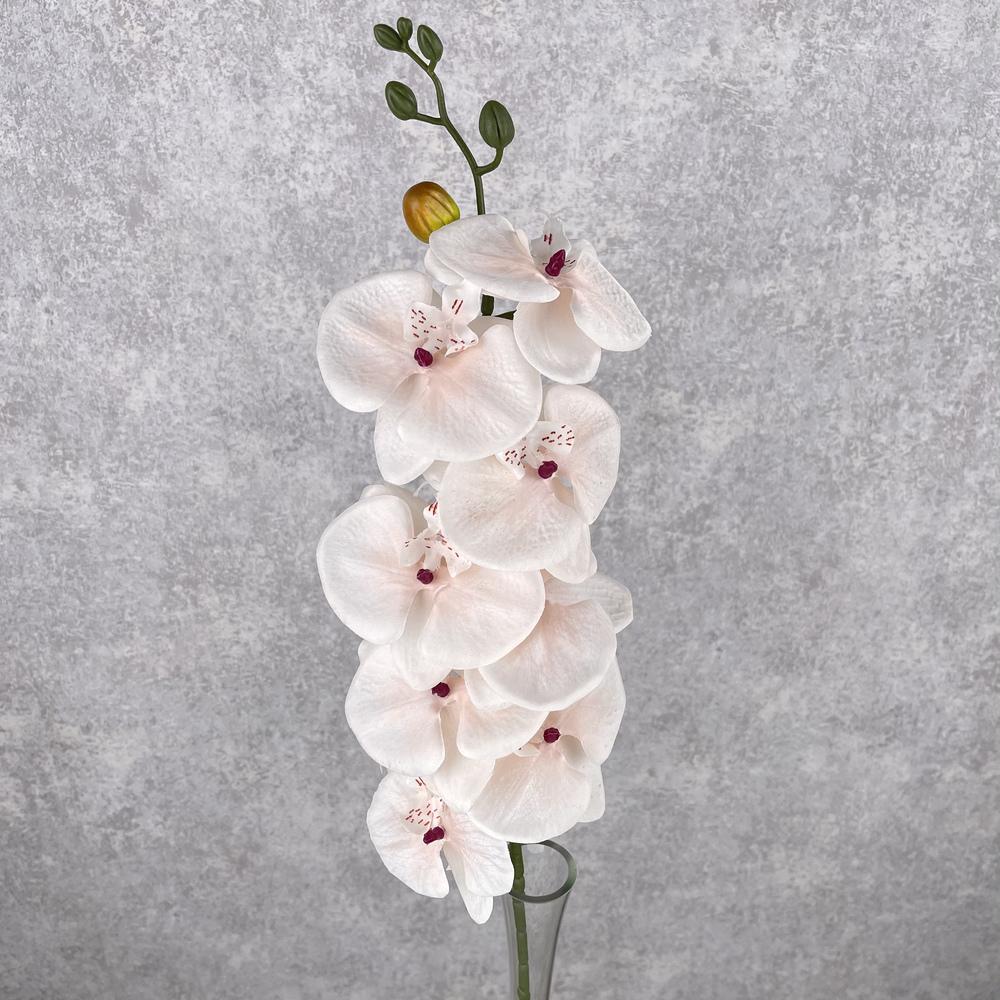 """орхидея """"мраморная"""" пудровая"""