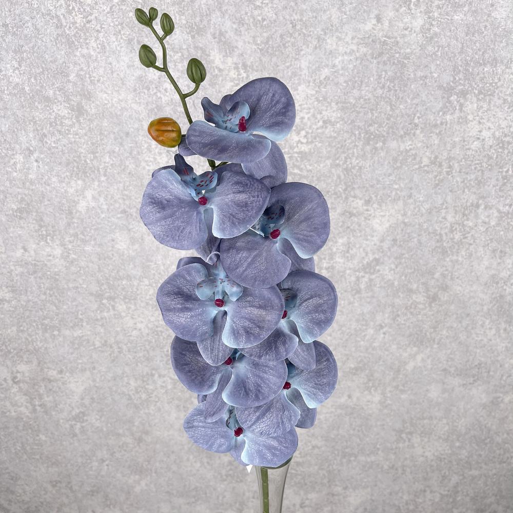 """орхидея """"мраморная"""" серо-голубая"""