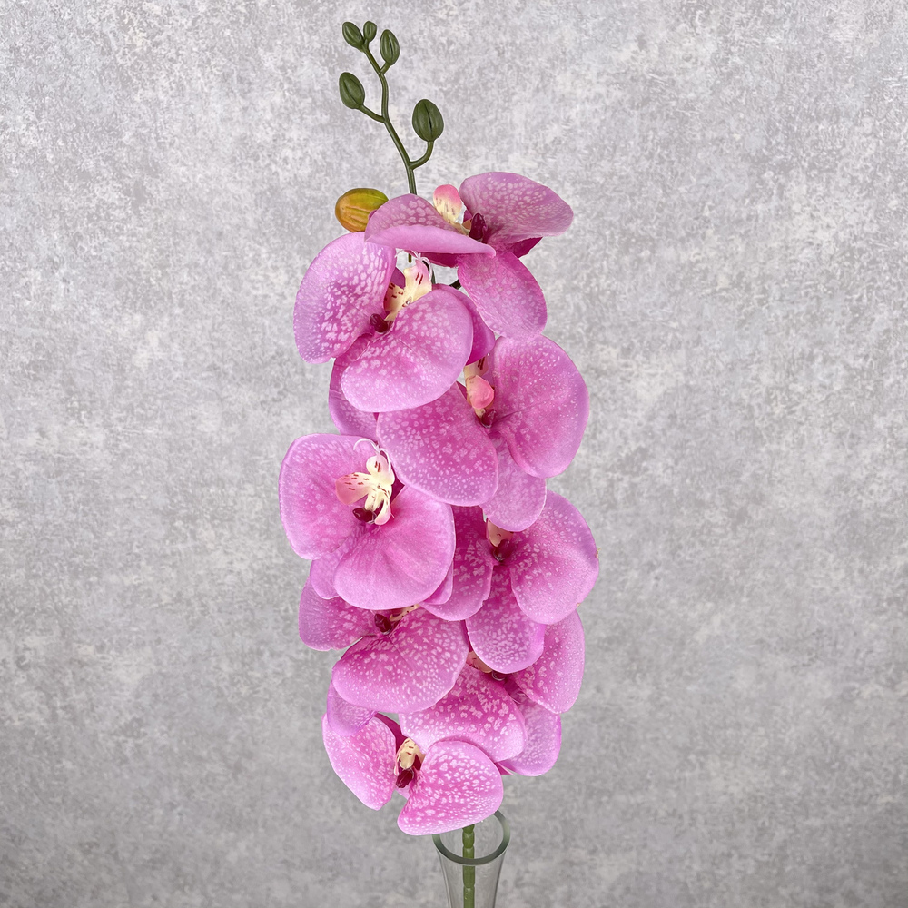 "орхидея ""мраморная"" ярко-розовая"