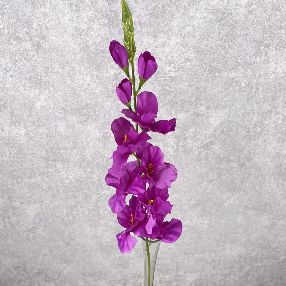 Гладиолус средний (фиолетовый)