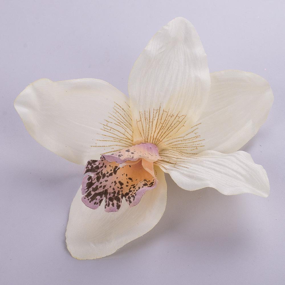 головка орхідеї персикова