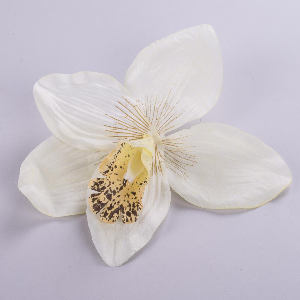 головка орхідеї біла