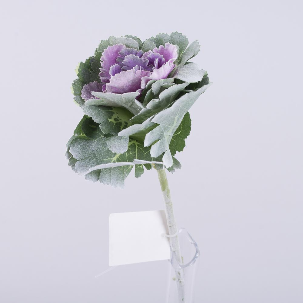 Капуста декоративная фиолетовая серединка в напылении