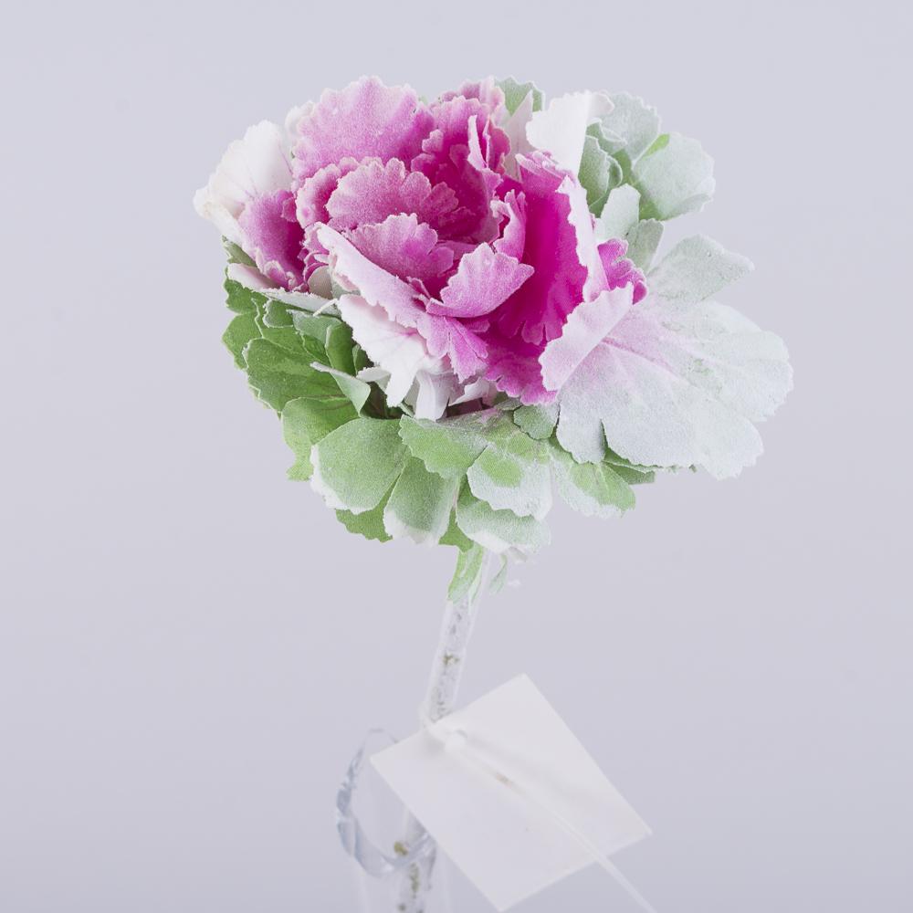 Капуста декоративная розовая в напылении