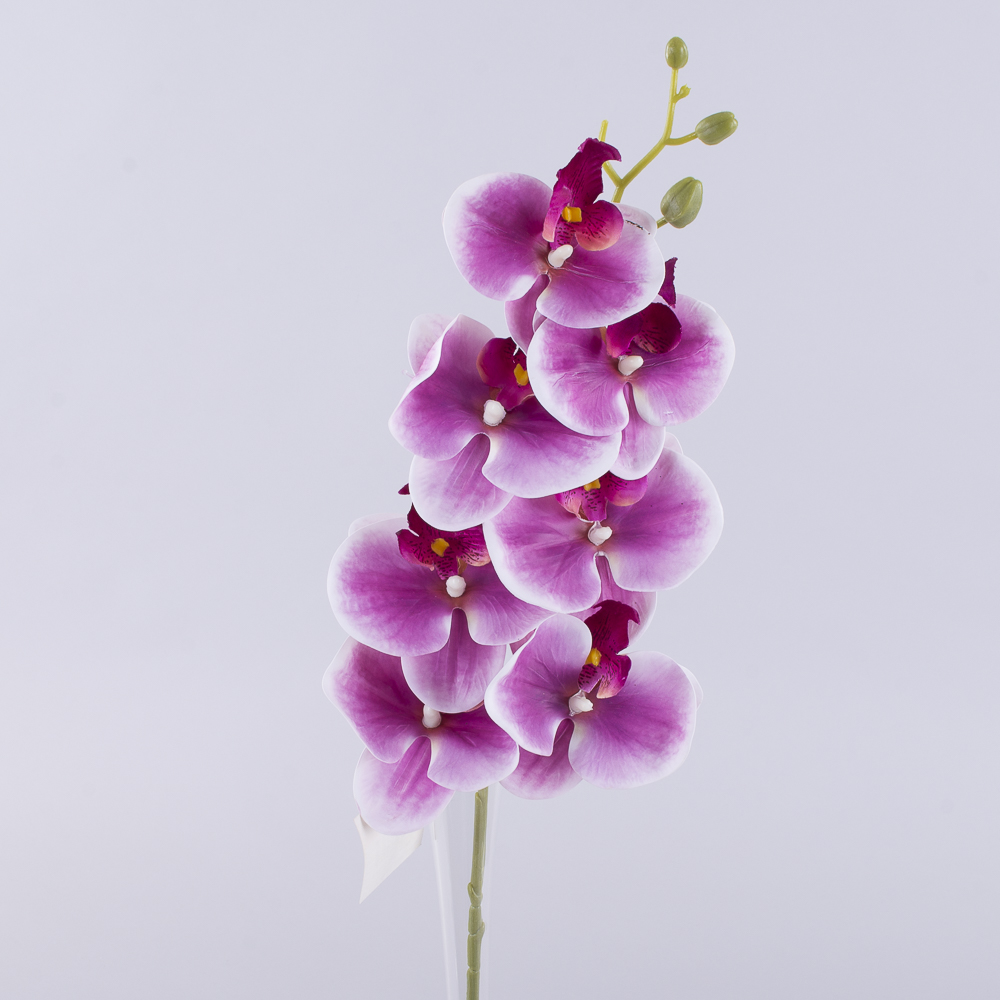 """Орхидея латексная """"аврора"""" сиреневая"""