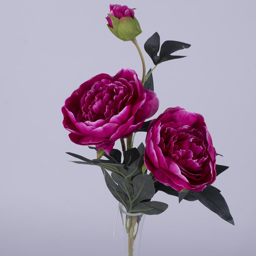 Пион 2 цветка и бутон малиновый