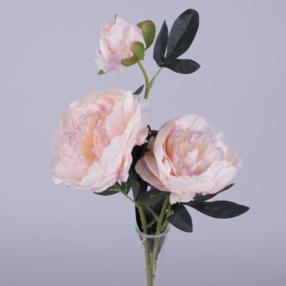 Пион 2 цветка и бутон нежно розовый